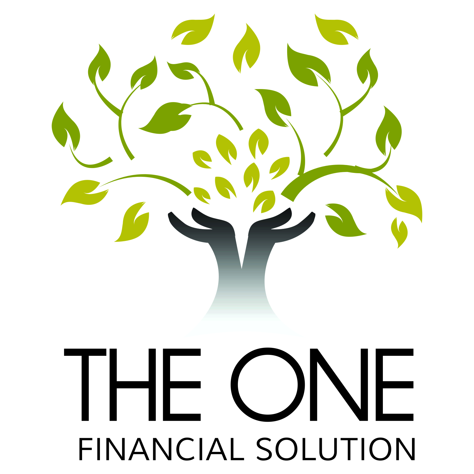 The One Financial Solution George Western Cape